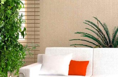 Комнатные цветы как дизайнерское решение в интерьере квартиры